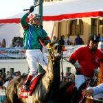 """""""Don Dionisio"""" se quedó con el Derby 2013"""