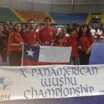 Una medalla de bronce logró la delegación nacional en el X Panamericano de Wushu