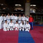 Este domingo finalizó la participación chilena en fecha holandesa de la Karate1 Premier League
