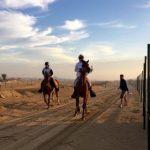 Binomios chilenos de enduro ecuestre realizaron una excelente actuación en Dubai