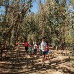 Primer Trail Run de Termas El Corazón inaugura recorrido por el Valle Aconcagua