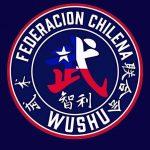 Federación Chilena de Wushu Kung Fu y Tai Chi se refirió al caso de Ignacia Rivera