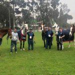 Caballos del equipo ecuestre chileno arribaron a Lima