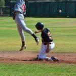 El béisbol de Santiago juega sus finales