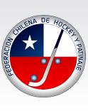 Federación de Hockey Patín suspende movilización trás reunión con Ruiz Tagle