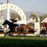 El caballo Giant's Steps se quedo con El Ensayo 2012