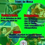 Abierto Navideño Tenis de Mesa 2012