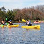 Con la participación de decenas de kayaks se desarrolló el evento Chiguayante Abraza al Bío Bío