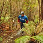 Parque Tantauco recibe la final del Columbia Adventure Challenge 2014