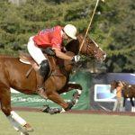 Chile entrenará con USA en apronte para el Mundial de Polo