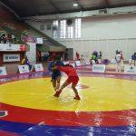 Chile obtuvo cuatro medallas en el Panamericano de Sambo