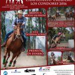 Este sábado se realizará el Campeonato Ecuestre Criadero Los Cóndores 2016