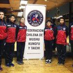Cuatro deportistas chilenos participarán en el Mundial Junior de Wushu 2018