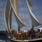 7 embarcaciones disputarán la Regata Travesía Desafío Cabo de Hornos