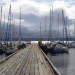 Patagonia fue el gran ganador de la Regata Desafío Cabo de Hornos 2020