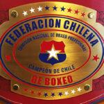 Suspenden la licencia de nueve boxeadores chilenos por exámenes médicos